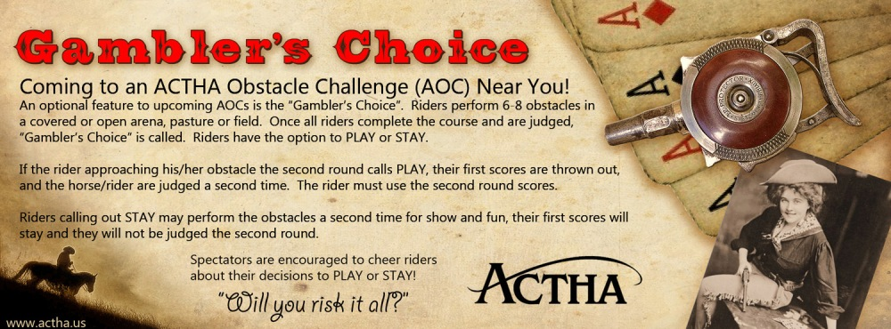 gamblers-choice2